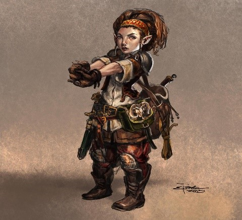 Image result for female halfling rogue